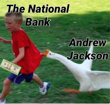 andrew jackson goose