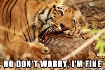 tiger and pangolin